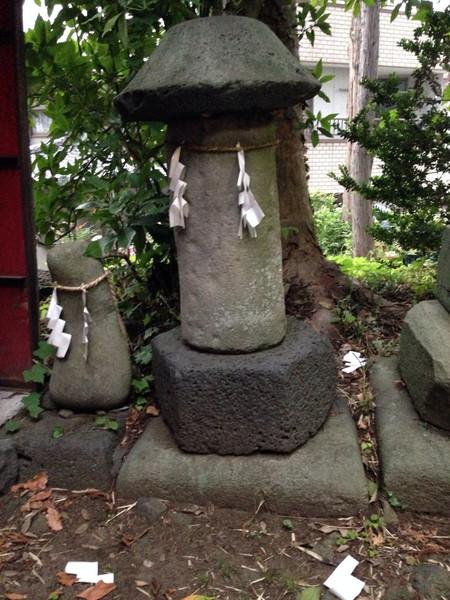 Nisikaturasuwa1